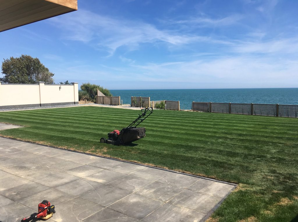 grass cutting by the sea