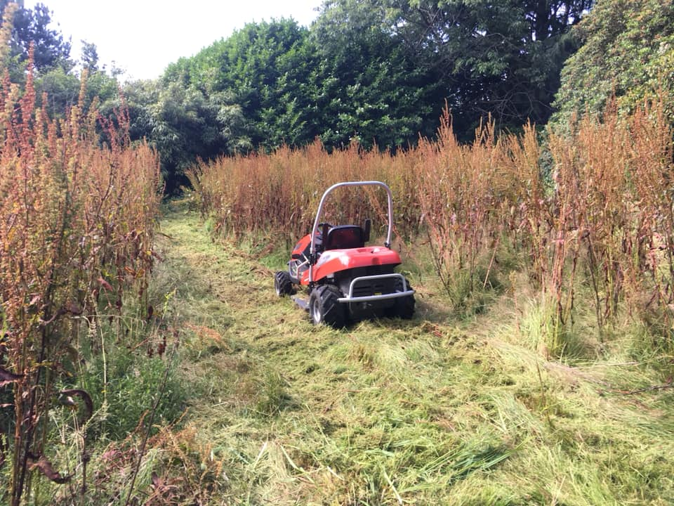 paddock-clearing